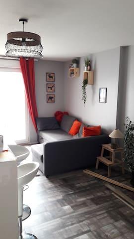 Bel appartement neuf type F2, pied des Vosges