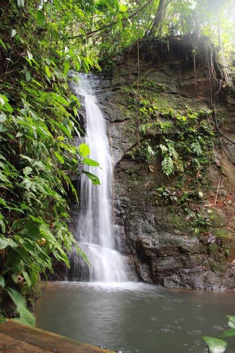 Villa Falling Water