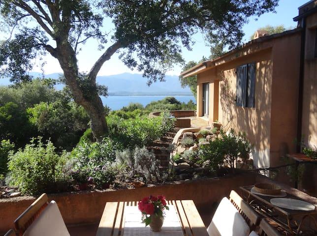 Villa mit Meerblick mitten in der Natur - Porto-Vecchio - Dom
