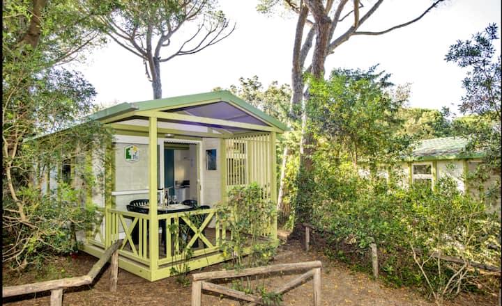 Casetta in Legno Cottage Petit Chambre
