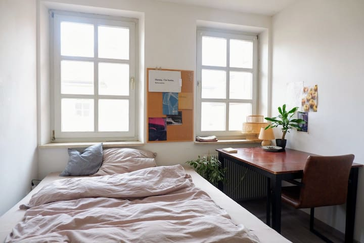 Private room in a sunny apartment 5min from center