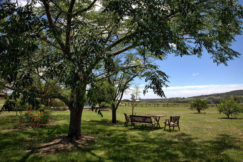 Relax on our 10 acre Estate and enjoy the serenity