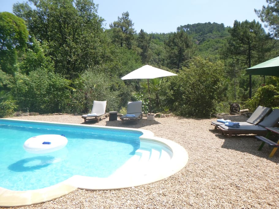Cevennes stone house private pool maisons louer for Piscine aigrefeuille