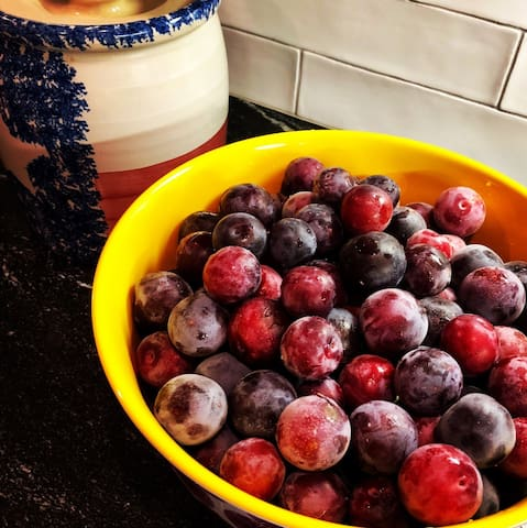 Juicy plums, destined for the jam pot.