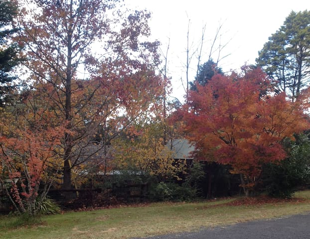 The Creek House in Autumn