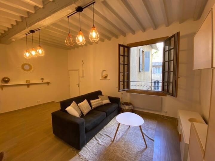 Au coeur de Aix, douillet appartement avec balnéo