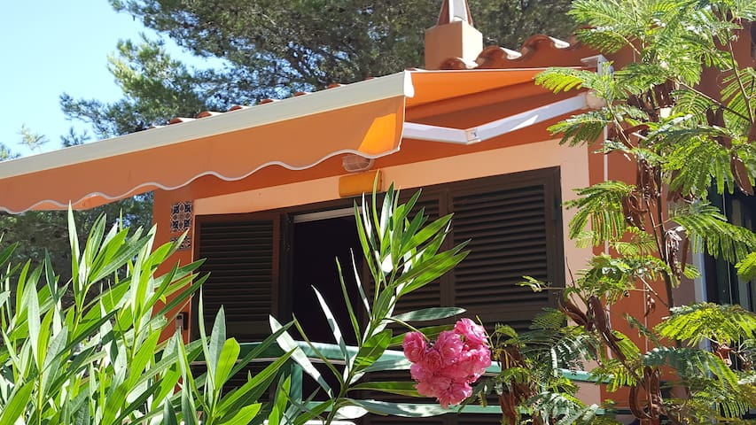 Apartment in Menorca natural beach. - Serpentona - Apartament