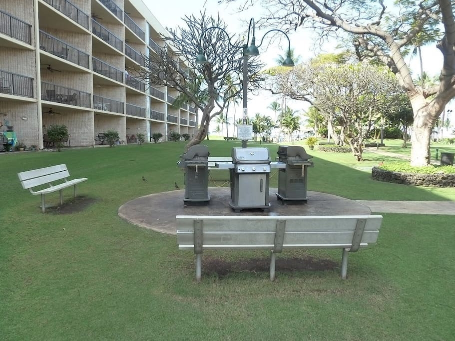 BBQ area in garden area between complex buildings.