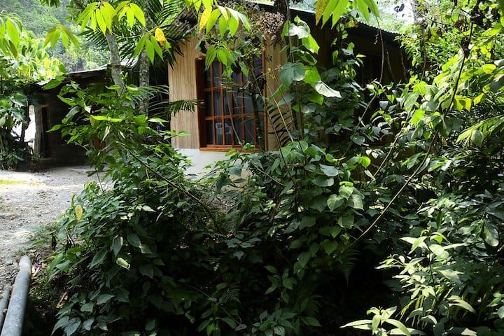 Cuartos en casa en la comunidad lacandona Naha.