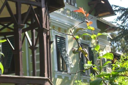 Villa Wald Idylle - Villa