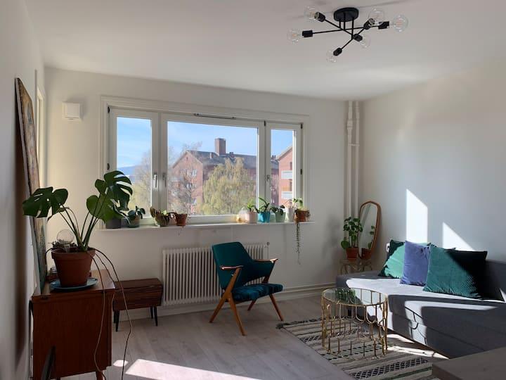 Perfect, new, comfortable  flat -Akerselva-Sagene