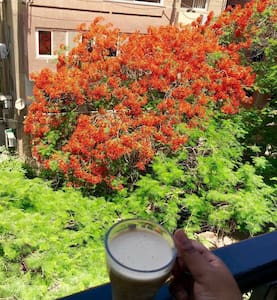 Sunny apartment in Maadi Sarayat ☀️ - Cairo