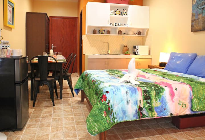 NEW Budget Studio with Dining Area in Coron Town