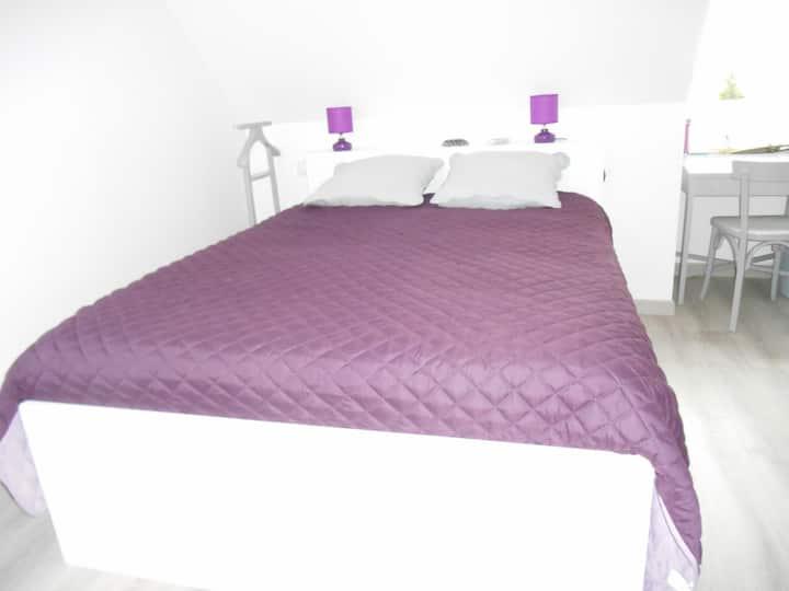 Chambre spacieuse et cosy avec étage privatif.