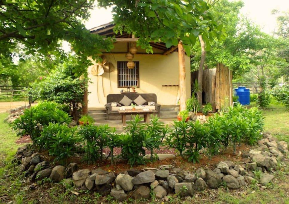 patio and yard