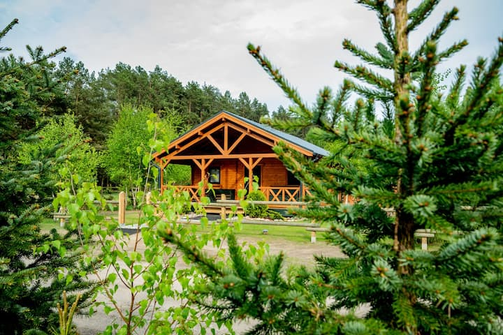Chata na polanie- Dom pod brzozą
