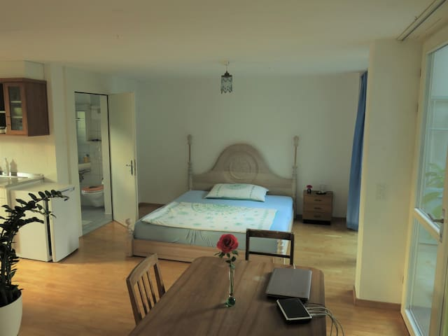 Lovely appartement near Lucerne