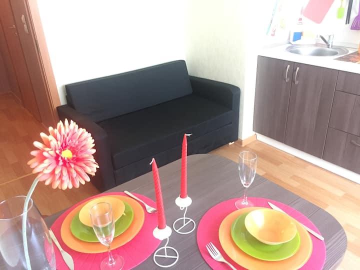 Уютная комфортная квартира на Парнасе