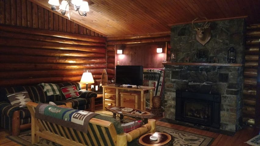 Adirondack cabin close to it all! - Lake George - Kabin