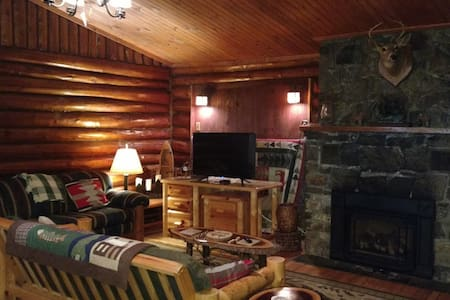 Adirondack cabin close to it all! - Lake George