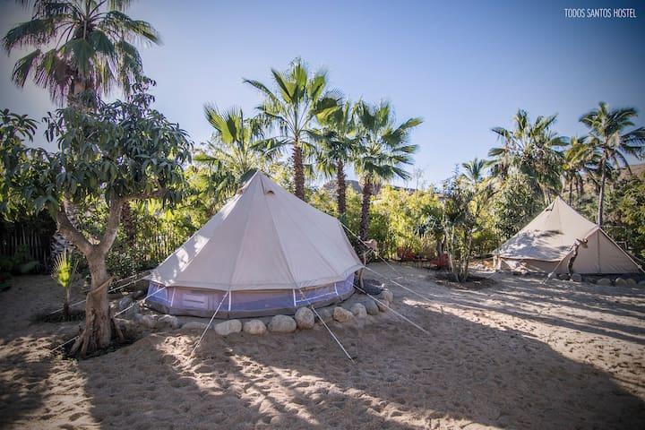 Canvas tents - Todos Santos Hostel