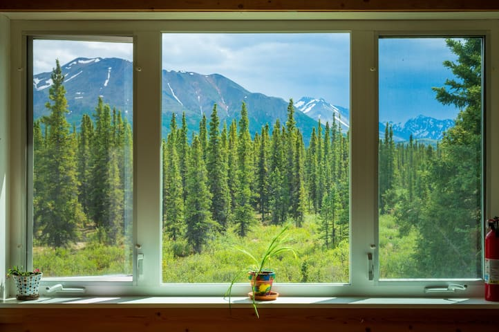 Family-friendly in the heart of Denali