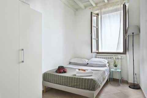 SINGLE ROOM (or small double )