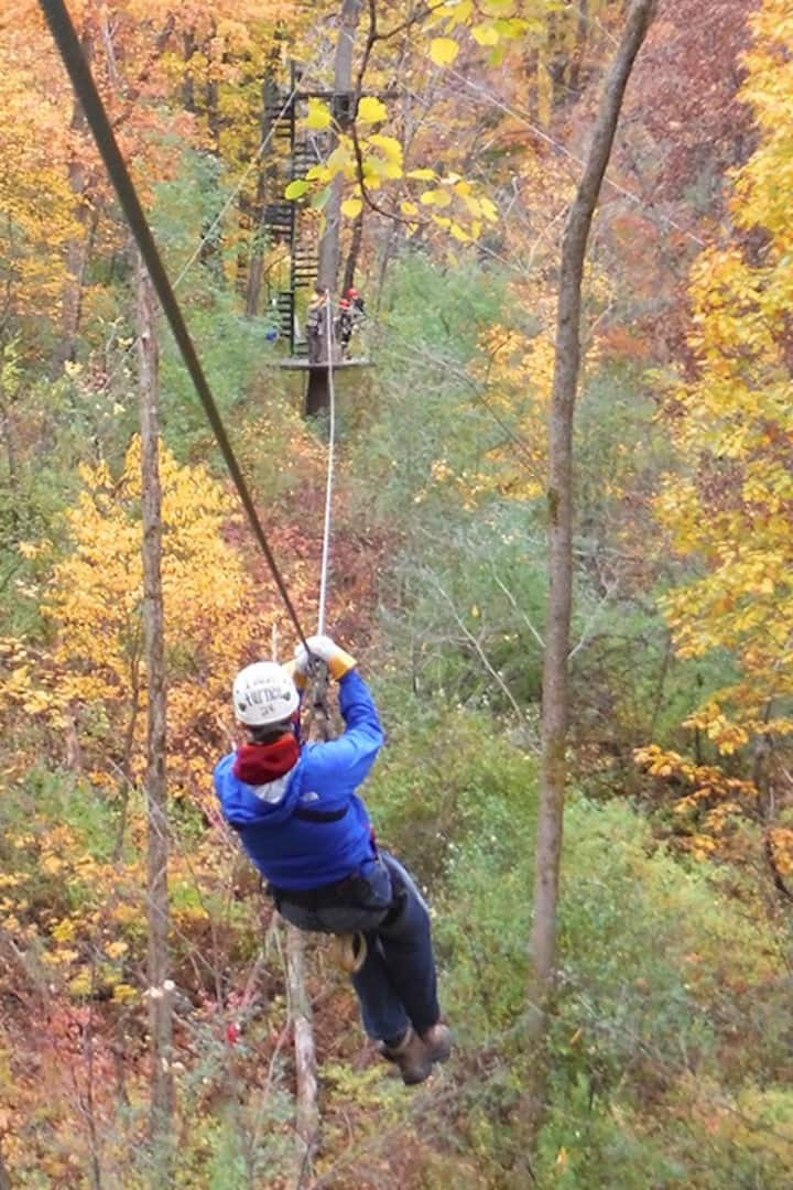 Zipping through the fall foliage
