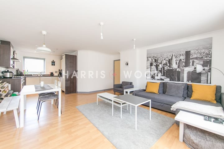 Huge Apartment near River and University