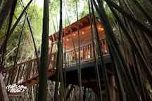 View of the Northside of the treehouse with our large private Zen porch.  You'll feel like you're in Hawaii or Thailand.