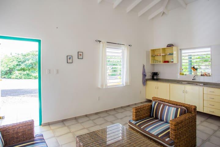 Divi Divi Apartment Kalebas; 2 - 4 guests. - Willemstad - Pis