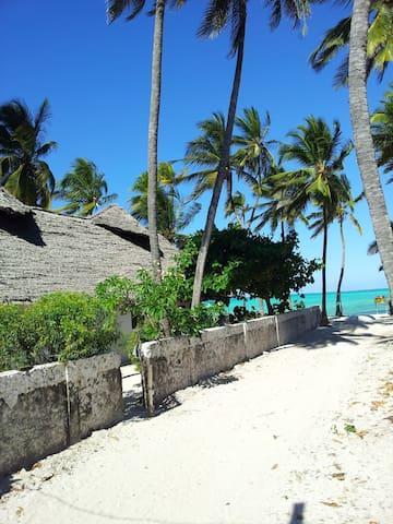 Jambiani Guesthouse - Jambiani - House