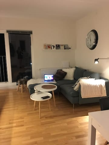 Nice flat in downtown Roskilde