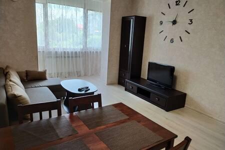 Квартира-студія зі спальнею в місті Трускавець