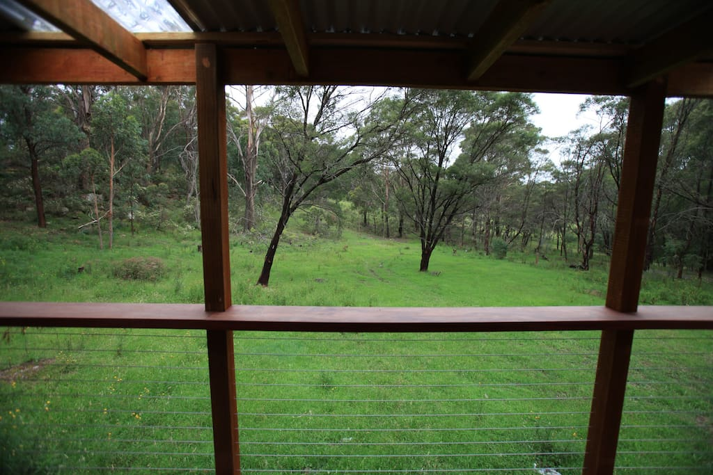 View from the farmstay cottage. Watch the wombats and kangaroos