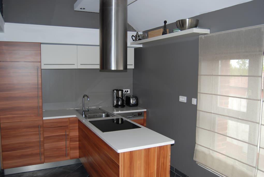Cuisine moderne, électro-ménager haut de gamme. Plaque à induction, four ICS et lave-vaisselle.