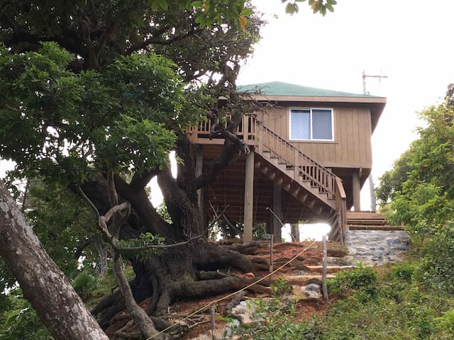 Ocean view treehouse - Jose Santos Guardiola - Pension