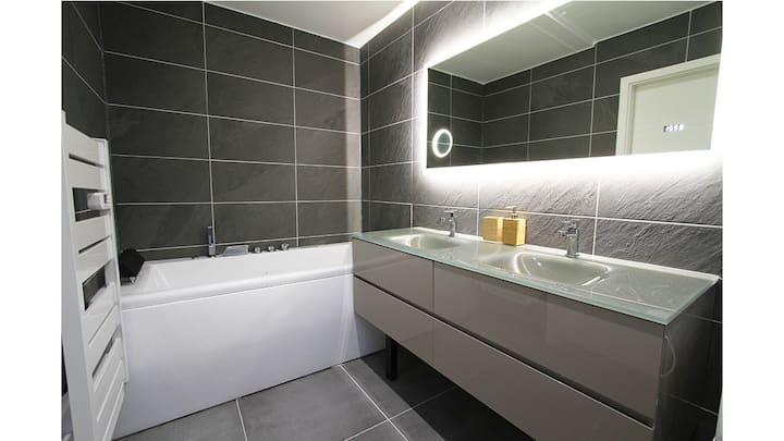 Appartement haut de gamme au centre ville Colmar