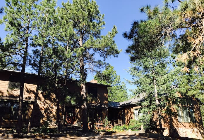 Quiet, Black Forest home on 5 acres near USAFA