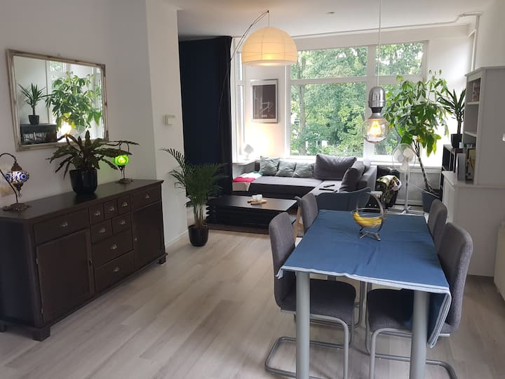Bright and Airy Two Storey Apartment On Canal/Park