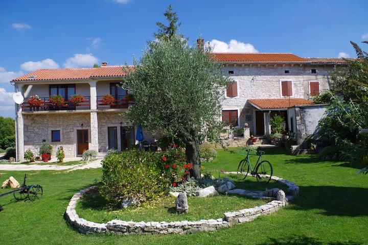 Luxurious Apartment in Šajini Croatia with Swimming Pool