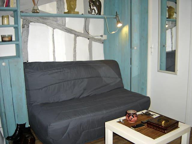 Studio meublé Auch 32000 centre historique - Auch - Apartamento