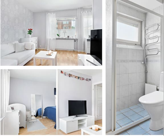 Nice and bright apartment  for renting out