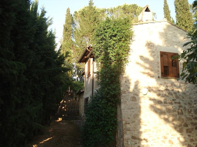 Casale del FICOGRANDE - B&B - Otricoli - Bed & Breakfast