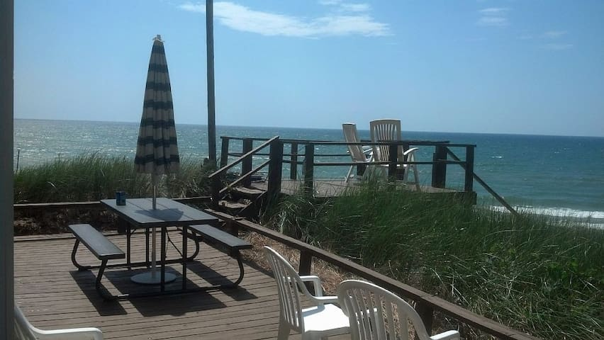 EARLY SPRING BEAUTY! ON LAKE  MICHIGAN BEACHFRONT! - Montague - Casa