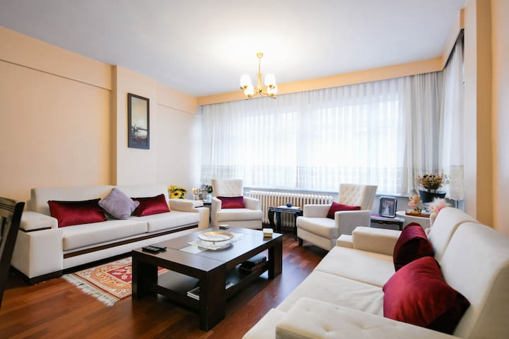 Fancy flat in the center - Istanbul - Huoneisto
