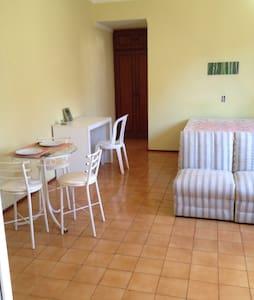 Kitinet espaçosa toda mobiliada - Ribeirão Preto - Apartment