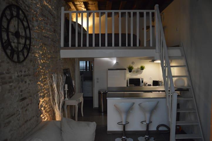 Charmant Duplex centre historique - Orléans - Apartamento
