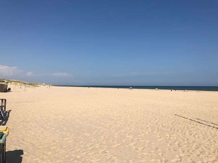 Espetacular T1 c/ wifi  a 200 m praia