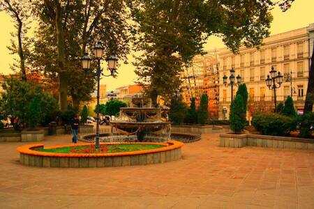 Comfortable rooms in center of city - Tbilisi